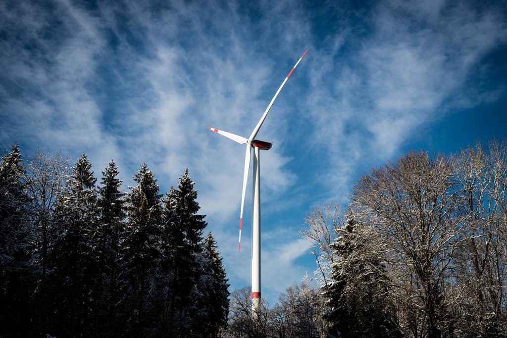 Wind turbine set in a forest